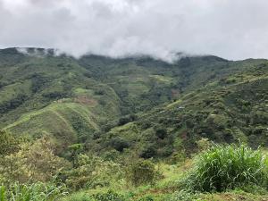 Peru Inti (1)