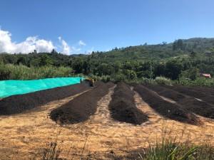 kostaryka orosi (4)