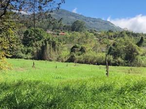 kostaryka orosi (5)